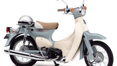 Honda Little Cub 50